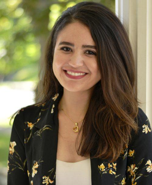 Sara Al-Gashm